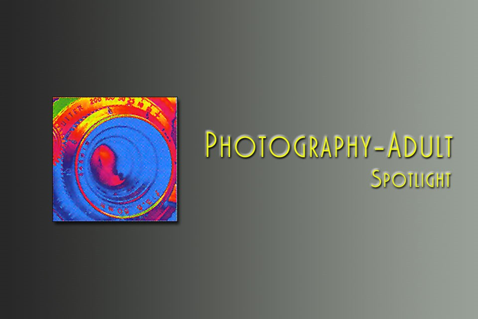 Photography-Spotlight